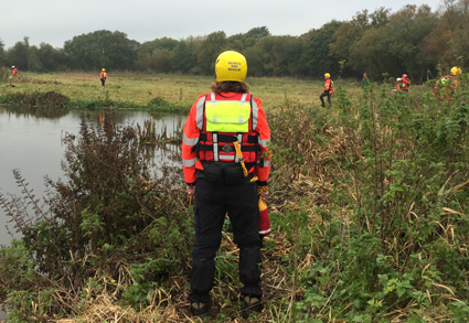Bank Search Training