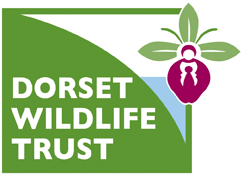 Dorset Wildlife Trust - Protecting Wildlife for the Future