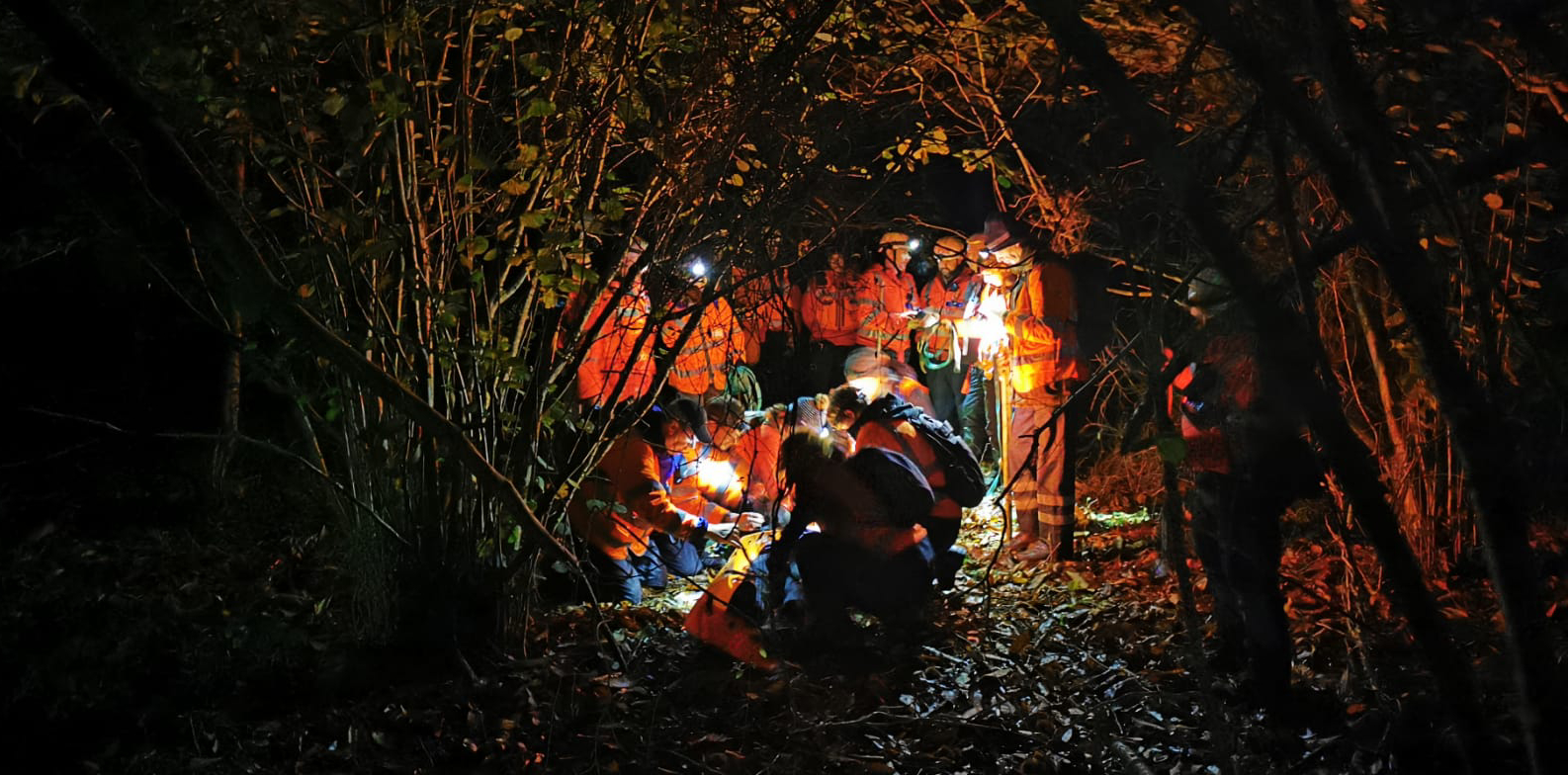 Searchers in the woods at night